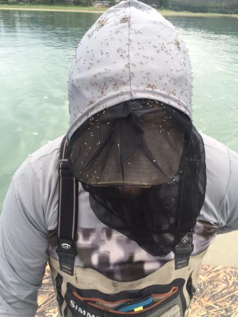 Film: Do-It-Yourself Wilderness Fly Fishing in Alaska in